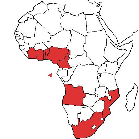 Où sommes-nous en Afrique